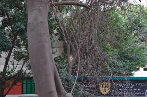 Blick aus unserem Gästezimmer auf die gegenüberliegende Schule. Auf dem Hof hinter der Mauer (dessen oberes Ende mit dem Schild versehen ist) gab es morgens immer eine Art Appell mit Trommeln und Rufen. Sehr nervig.