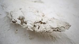 Vorstehendes, filigranes Teil des weißen Wüstenboden.