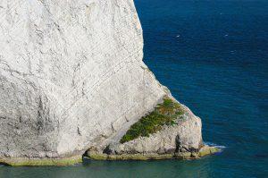 Fels bei den Needles am Westende der Isle of Wight