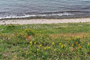 Schriftzug an der Küste bei Ales Stenar