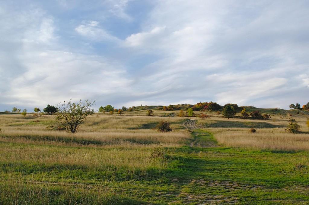 Der Napoleonstein auf einer Anhöhe über dem ehemaligen Schlachtfeld und Truppenübungsplatz.