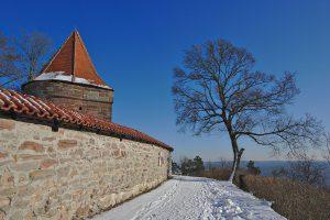 Ein Turm und ein Baum am Panoramaweg um die Leuchtenburg.