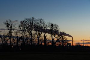 Sonnenuntergang in der Nähe meiner Wohnung.