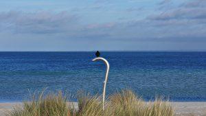 Impressionen vom Ostseestrand bei Haffkrug.