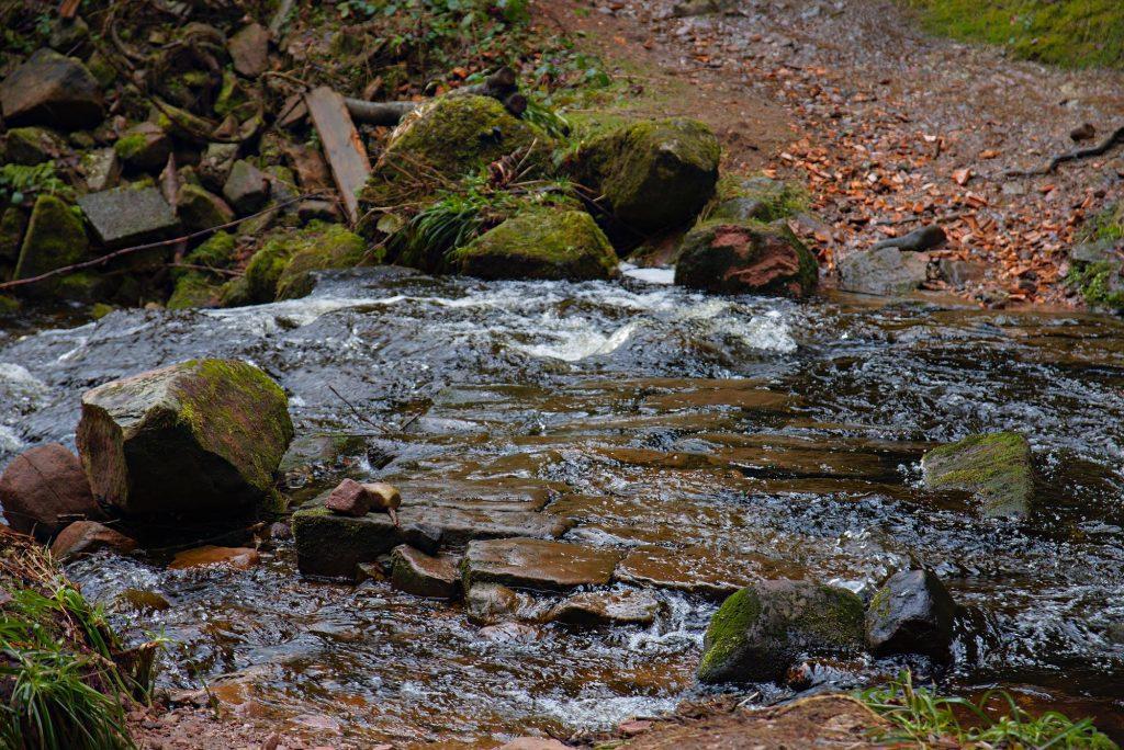 Eine Furt über den Sankenbach, die mittlerweile allerdings durch eine Brücke unmittelbar daneben ersetzt wurde, sodass man jetzt auch bei hohem Wasserstand trockenen Fußes den Fluss queren kann.